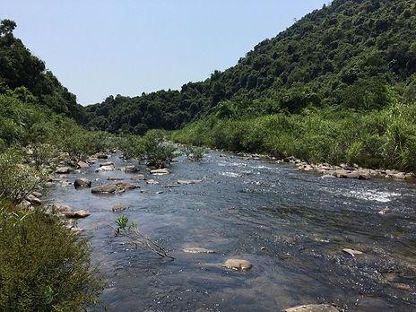 photo 12 Phong Dien.jpg