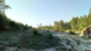 photo_habitat_2.jpg