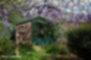 vegetalisation_voliere_jpr.jpg