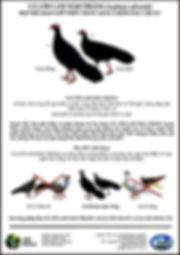 figure_2._Poster_pour_rechercher_le_fais