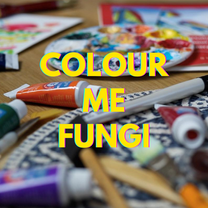 COLOUR ME FUNGI film poster