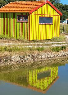 fort-royer-cabane-jaune.jpg