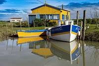 baudissiere-bateaux.jpg