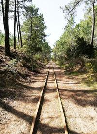 saint-trojan-rails.jpg