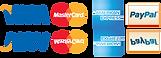 Visa-Mastercard-American-Express-Interac