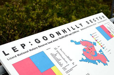 goonhilly6.jpg