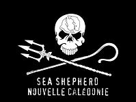 Logo SSCS NC 2.png
