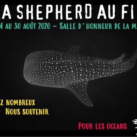 Sea Shepherd au festival de l image sous-marine