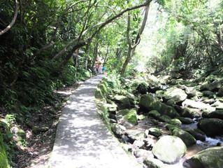 就是愛爬之親子登山 - 內湖大溝溪溪畔步道
