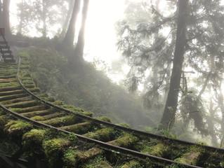 就是愛爬之親子登山 – 見晴懷古步道