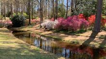 Beautiful Callaway Gardens