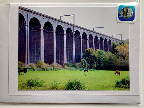 Digswell Viaduct from the Hertford Road