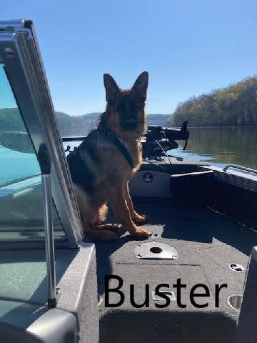 buster1.jpg