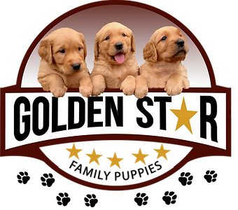 Golden Star Logo.png