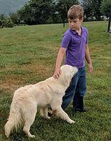 a boy with golden retriever