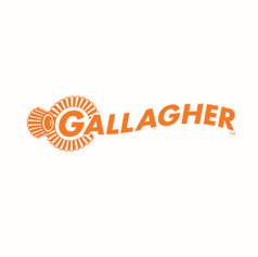 Gallagher Fencing