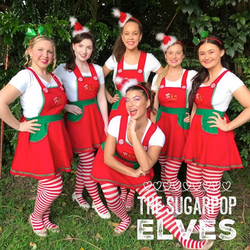 SP_Elves