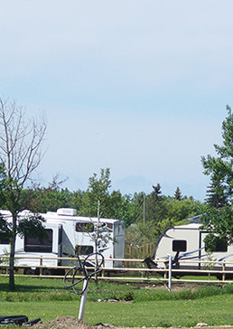 Group Camp Area