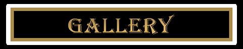 gallery tab.png
