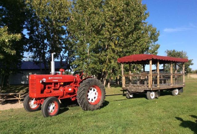 Tractor & Wagon