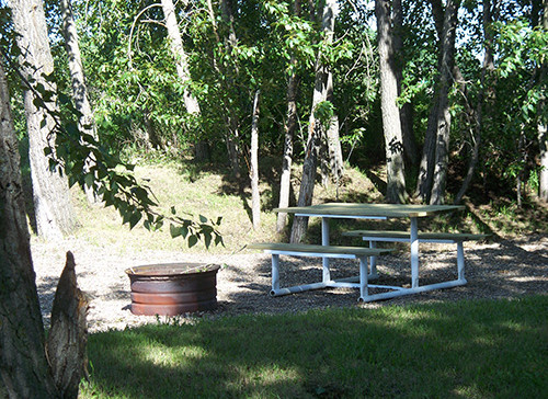 picnic fire pit.jpg
