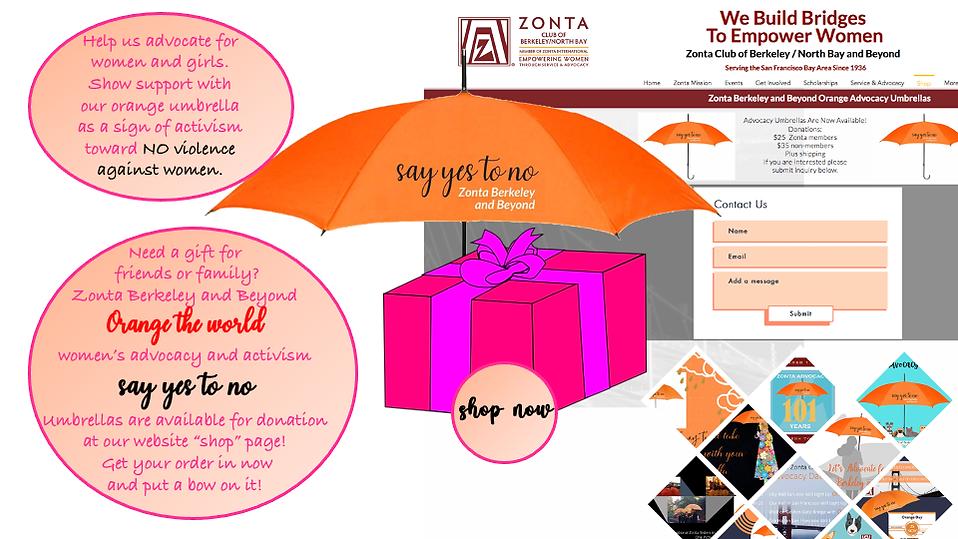 Umbrella advocacy campaign shop 1.png
