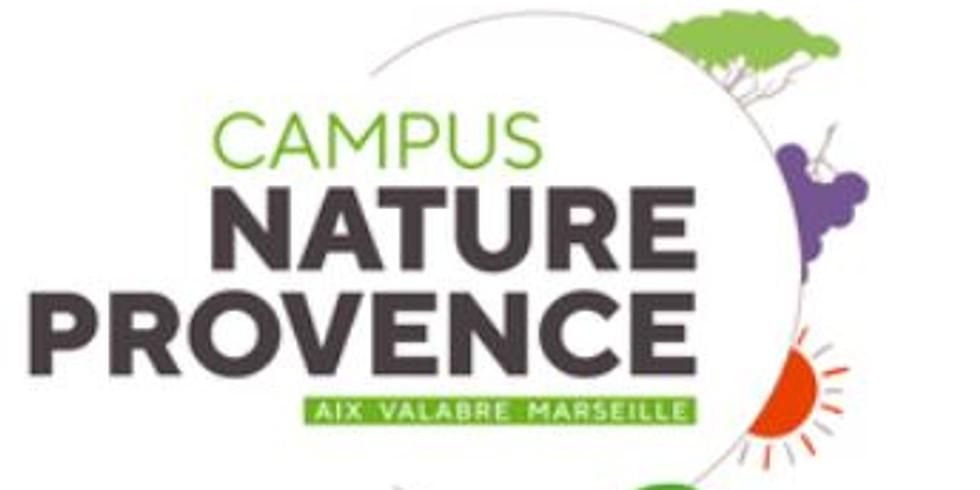 Information collective sur Marseille