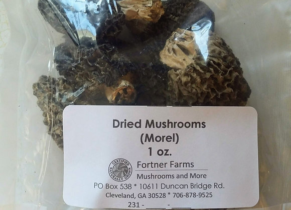 Dried Morel Mushrooms - 1 oz.