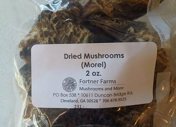 Dried Morel Mushrooms - 2 oz.