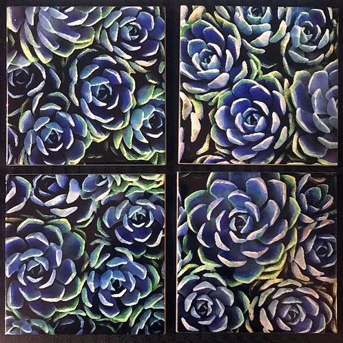 Dreamy Succulent Coasters, Set of 4