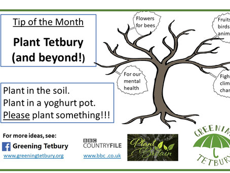 Plant Tetbury (and beyond!)