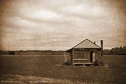 Abandoned Sharecropper's House, Lenoir County, North Carolina