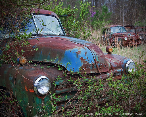 Abandoned Trucks, Hillsborough, North Carolina