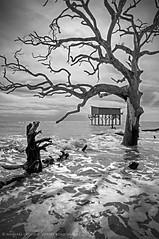 Beach House, Hunting Island, South Carolina