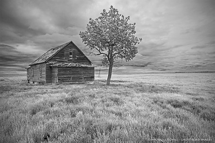 Farmhouse, North Dakota
