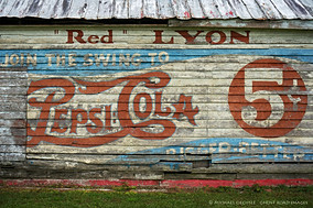 "Detail, ""Red"" Lyon's Store, Greene County, North Carolina"