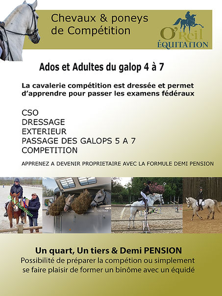 carnet 6 chevaux et poneys de compet.jpg