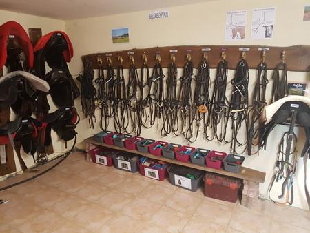 sellrie chevaux.jpg