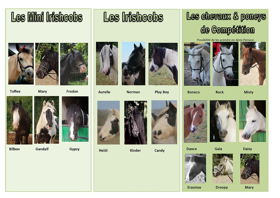 cavalerie du centre équestre et poney club irishcob pour faire du cheval dans la region centre en eure et loire 28130