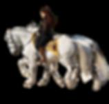 aurelia équitation spectacle équestre en Eure et loire à mévoisins chartainvilliers lèves senainville houx maingournois chateau de Maintenon gare de saint piat nogent le roi ymerais