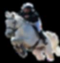 Nicolas centre équestre cso compétition équitation 28 jouy yermenonville bouglainval saint prest