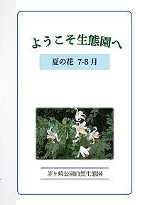 GideBook_Hana_07-08.jpg