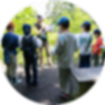 Konchu_Img05.png