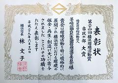 Syoujo_02.jpg