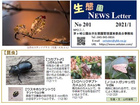 生態園 NEWS Letter