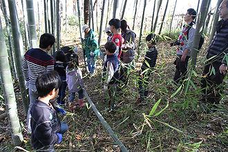 Hozen_TakeKiri02.jpg