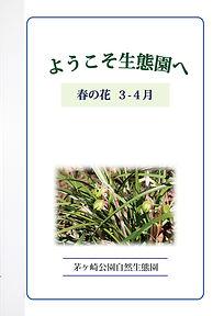 GideBook_Hana_03-04.jpg