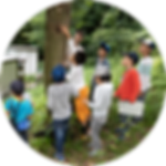 Konchu_Img07.png