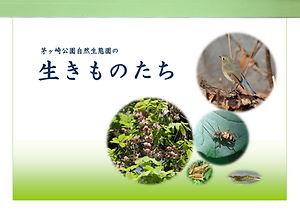 GideBook_Ikimono.jpg