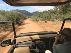 Open Vehicle Safaris